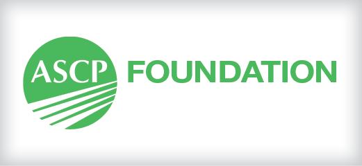 foundation banner