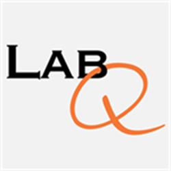 LabQ Clinical Laboratory Volume Online 2020